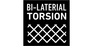 BI-LATERAL TORSION
