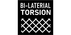 BI-LATERAL TORSION